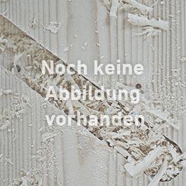 Dolle Mittelholmtreppe Berlin in grau, Stufen in Birke mit einseitigem Edelstahlgeländer